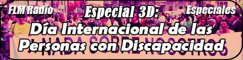 Especial 3D: Día Int. de las Personas con Discapacidad '10 - banner