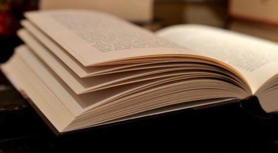 libro literatura leer